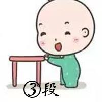 婴儿奶粉三段 (11)